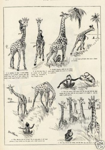 1893 LOUIS WAIN Antique Print Engraving GIRAFFE AND MONKEY